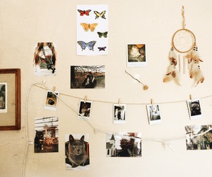 aesthetic, dream catcher, and lights image