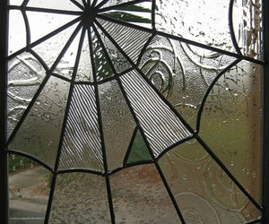 rain, window, and spiderweb image