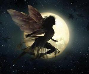 fairy, moon, and fantasy image