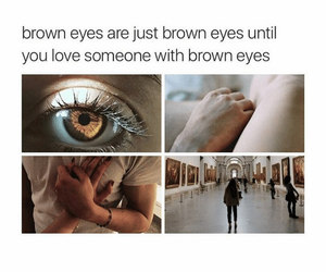 brown, eyes, and fall in love image