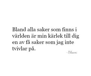sverige, swedish, and citat image