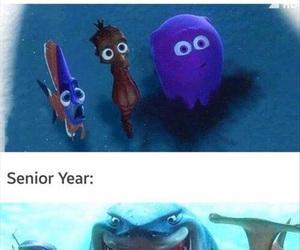 funny, school, and senior image