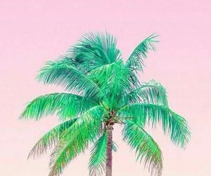 pamera playa hermoso image