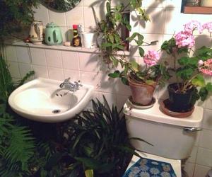 plants, flowers, and bathroom image