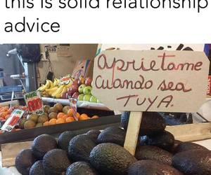 avocado, funny, and kinky image