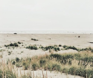 green, theme, and beach image