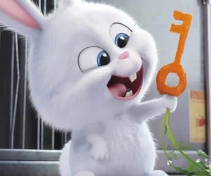 bunny and the secret life of pets image