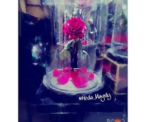 beautiful, bink, and rose image