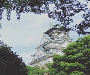 castle, japan, and nature image