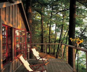 nature, cabin, and house image