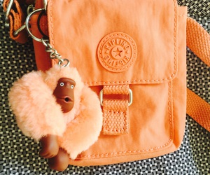 bag, Chango, and monkey image