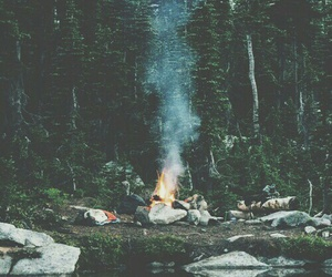 nature, fire, and forest image