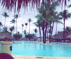 palms, pool, and travel image