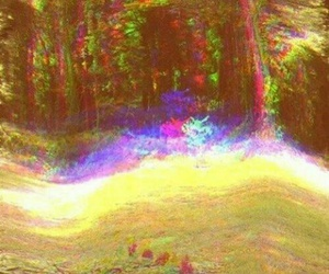 psychedelic, forest, and colors image