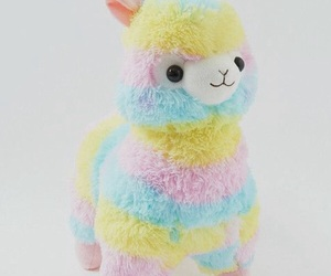 colorful, rainbow, and alpacasso image
