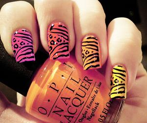 nails, orange, and nail art image