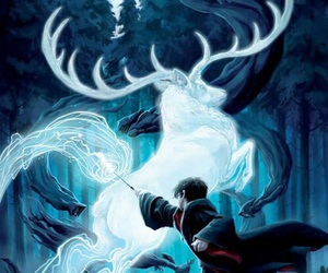 harry potter and expecto patronum image