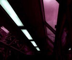 dark, theme, and raspberry image
