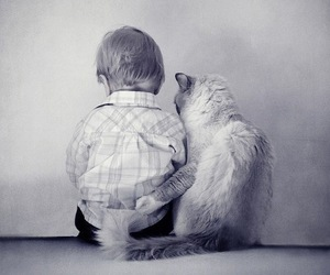 cat, friends, and baby image