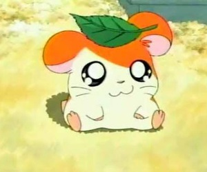 hamtaro, hamster, and anime image