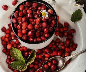 berry, food, and shop image