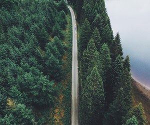 lake, road, and trees image