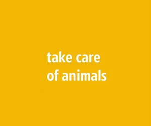 animals, care, and quotes image