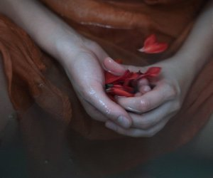 flower, hand, and water image