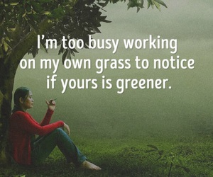 busy, grass, and green image