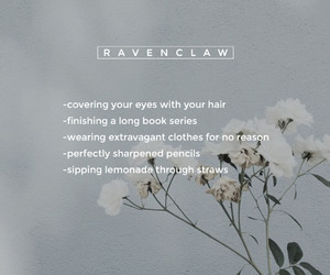 ravenclaw, aesthetic, and harry potter image