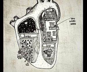 heart, love, and you image