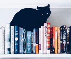 black, gatto, and libri image