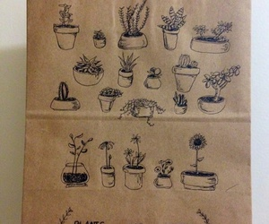 plants, brown, and aesthetic image