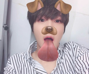 dog, snapchat, and choi image