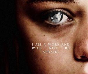 game of thrones, arya stark, and wolf image