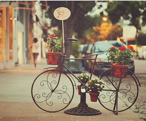 bicycle, other, and flower image