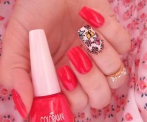 nails, unhas, and unhasdecoradas image
