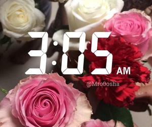 flowers, snap chat, and ًورود image
