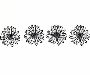 flowers and black image