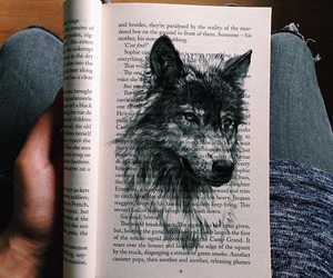 art, book, and wolf image