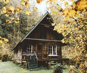 cabin, porch, and woods image