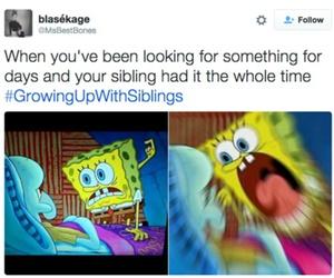funny, siblings, and growingupwithsiblings image