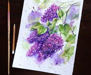 arte, color, and pintura image