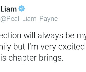 promise, 1d, and liam payne image