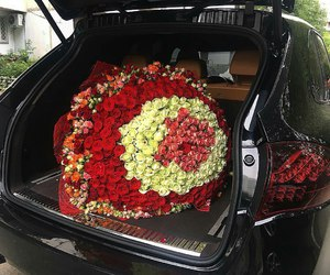 roses and flowers image