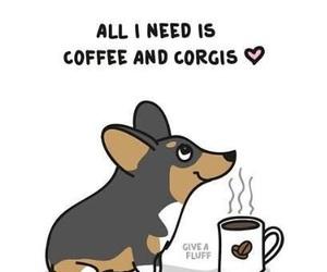 coffee and corgi image