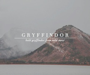 gryffindor, harry potter, and hp image