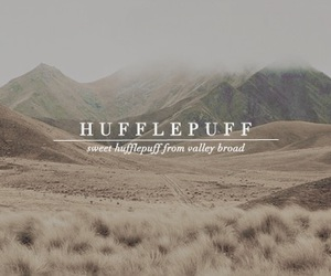 harry potter, hp, and hufflepuff image