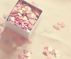 pink, heart, and photography image