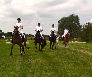 belgium, competition, and dressage image